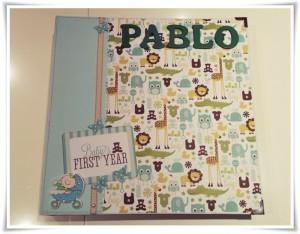 Libro del primer año del bebe